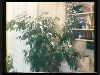 perverse fanny (0569) full vintage movie